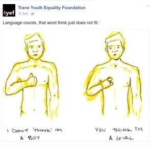 TYEF facebook
